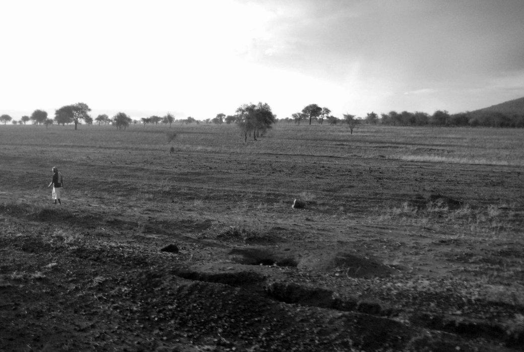 Morning breaks on the savanna.